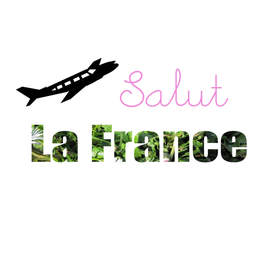 Salut La France