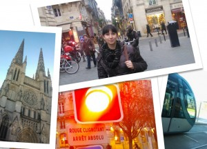 Bordeaux Collage