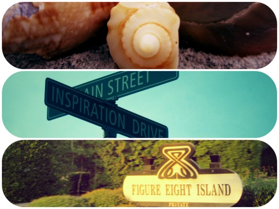 Welcome to Figure Eight