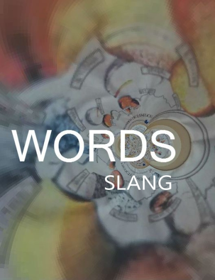 words slang