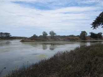 The UC Barbara lagoon.