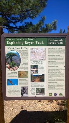 Reyes Peak 06